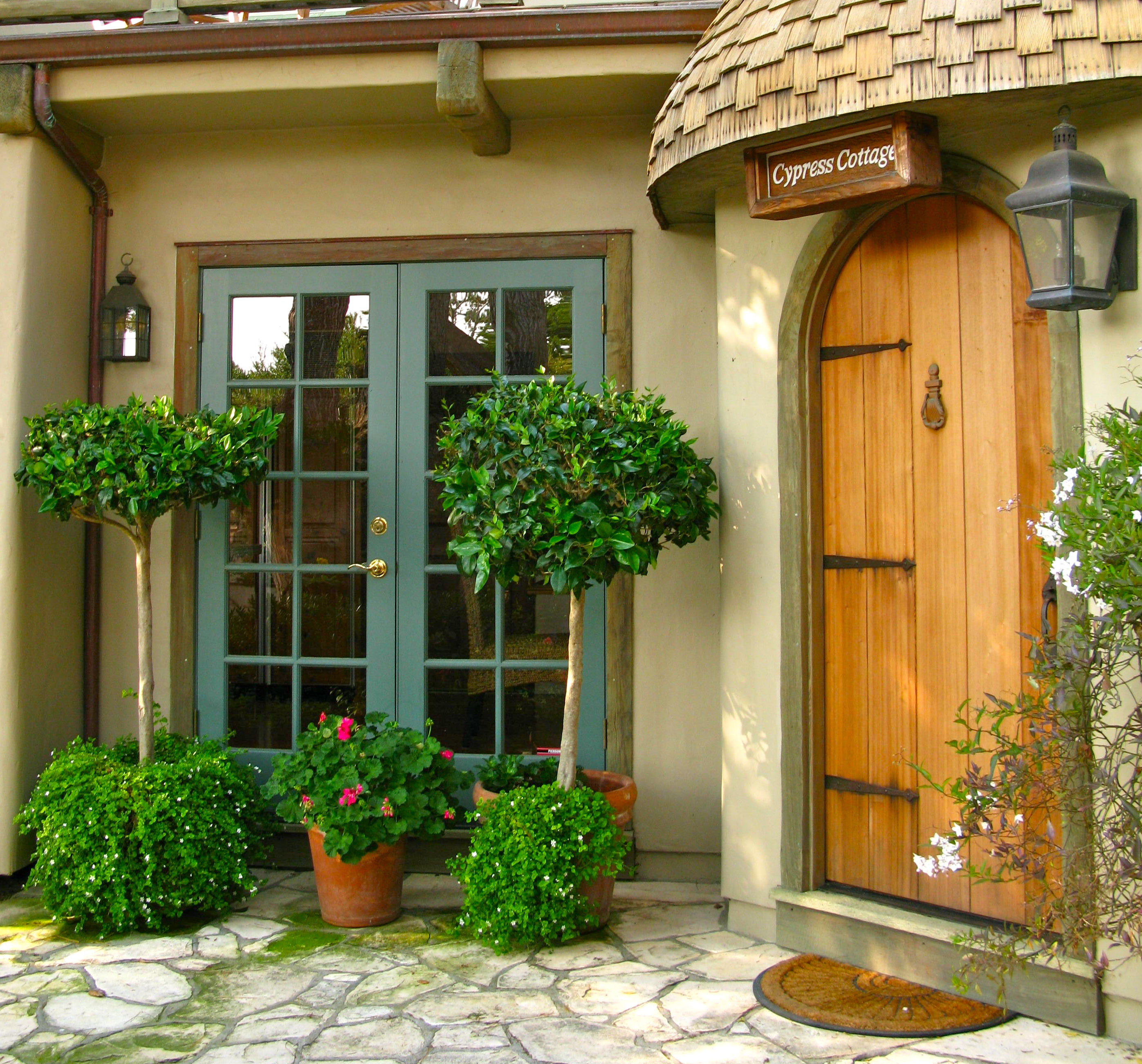 2602 #376D15 The Pot To The Right Of The Front Door Contains Potato Vine On A  pic Cypress Exterior Doors 45512793