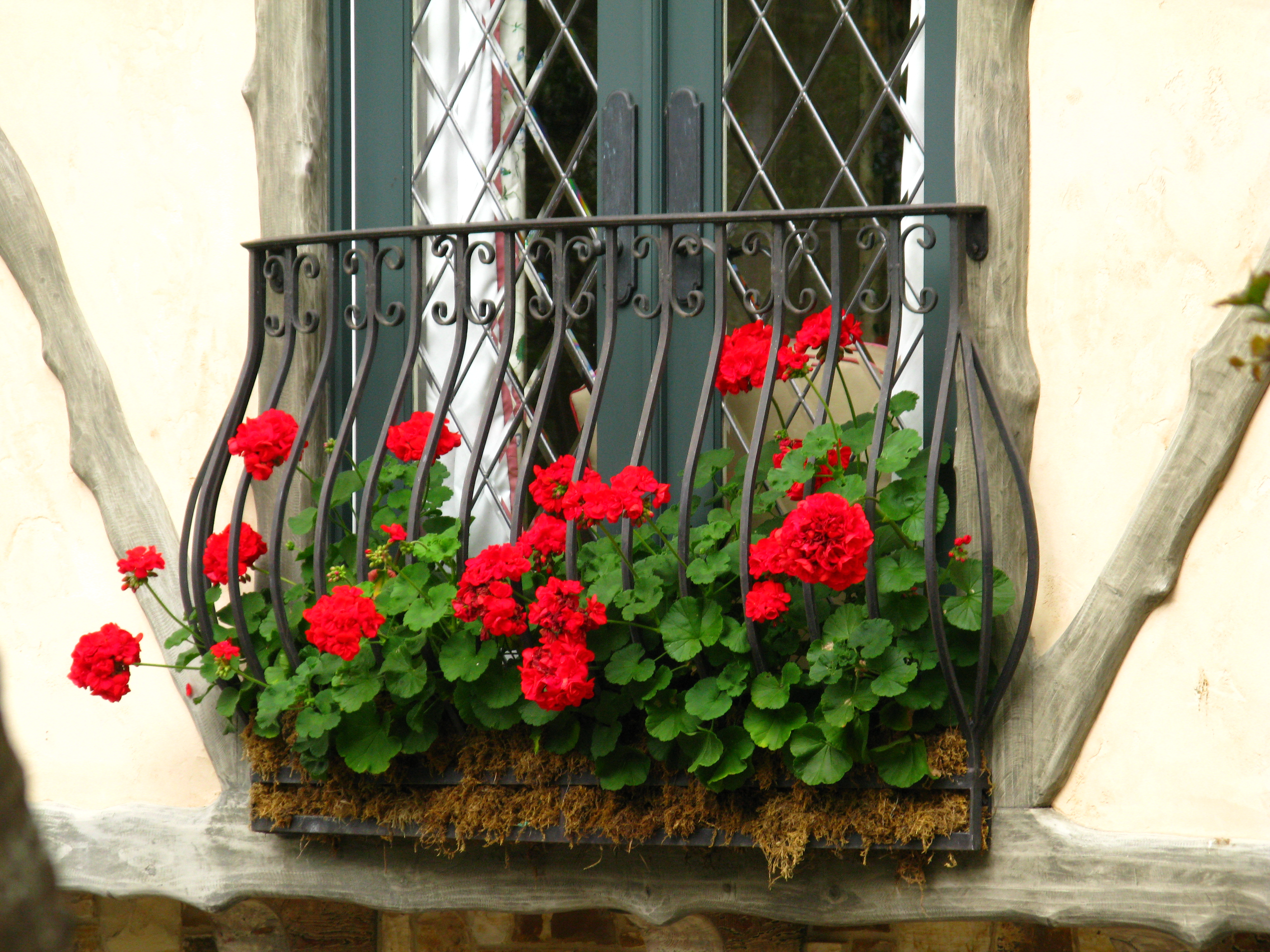 Window Boxes In Carmel Adding Charm To The Fairytale