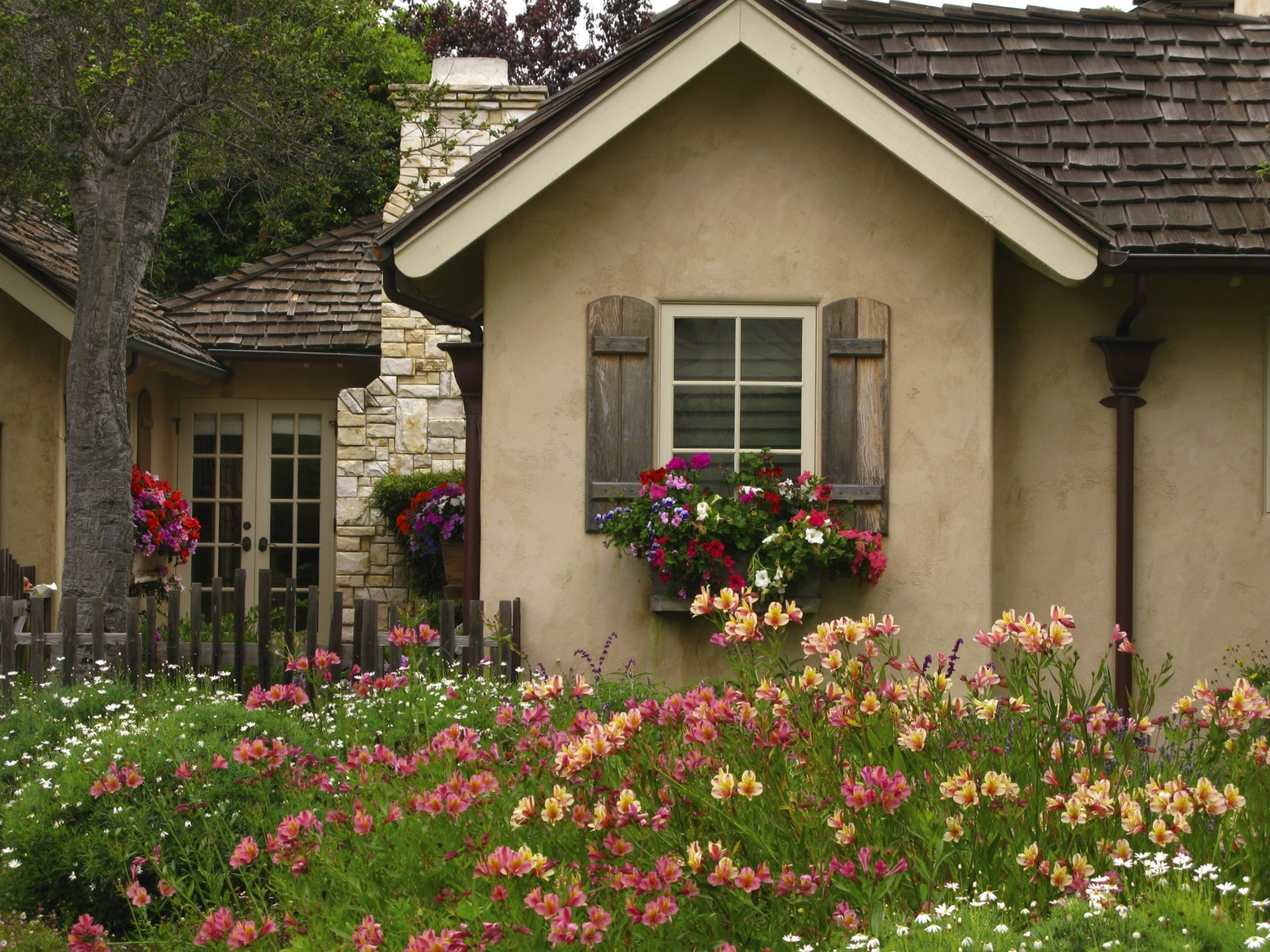 CARMELS COTTAGE GARDENS Once upon a timeTales from