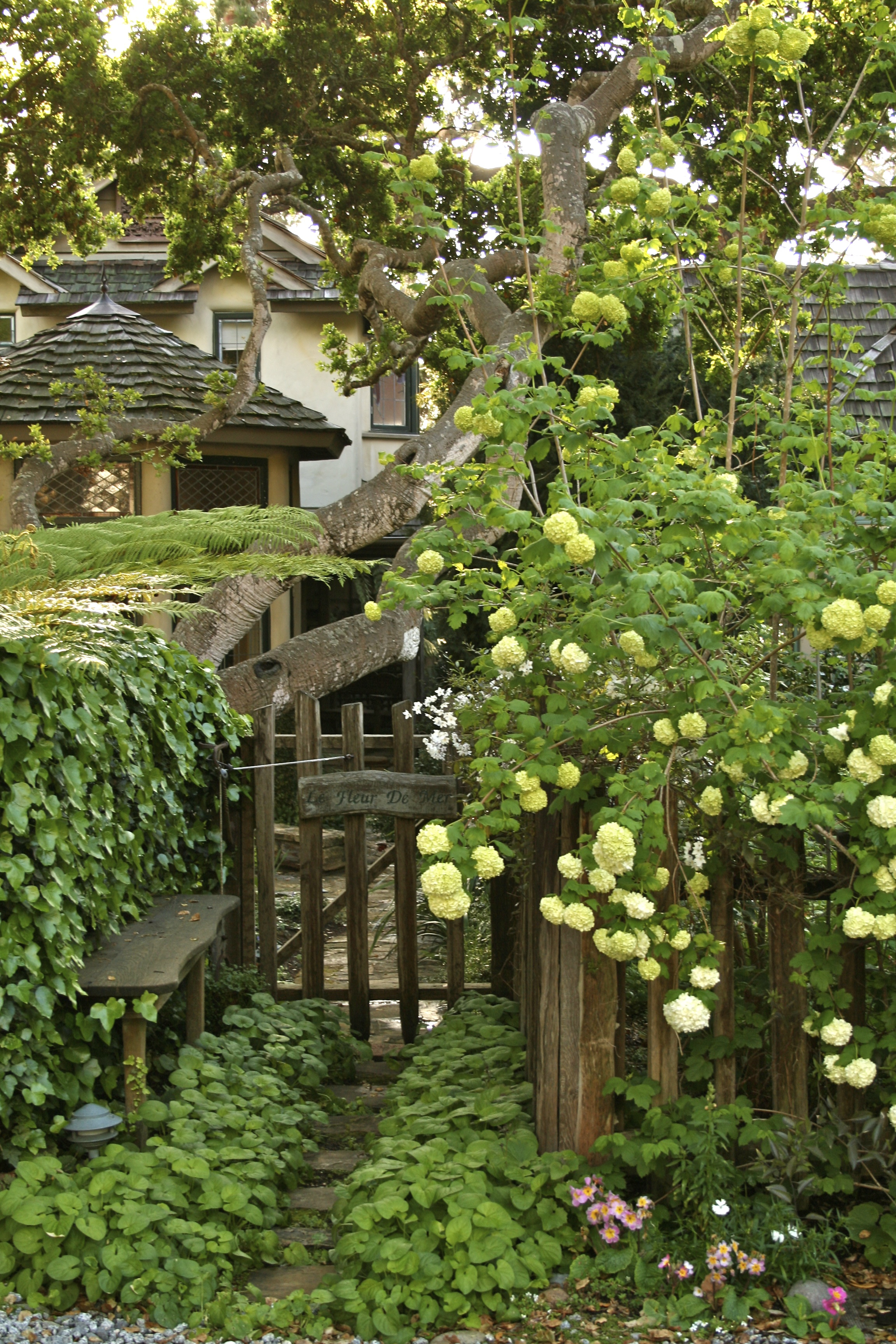 Cottage Gardens: Once Upon A Time..Tales From