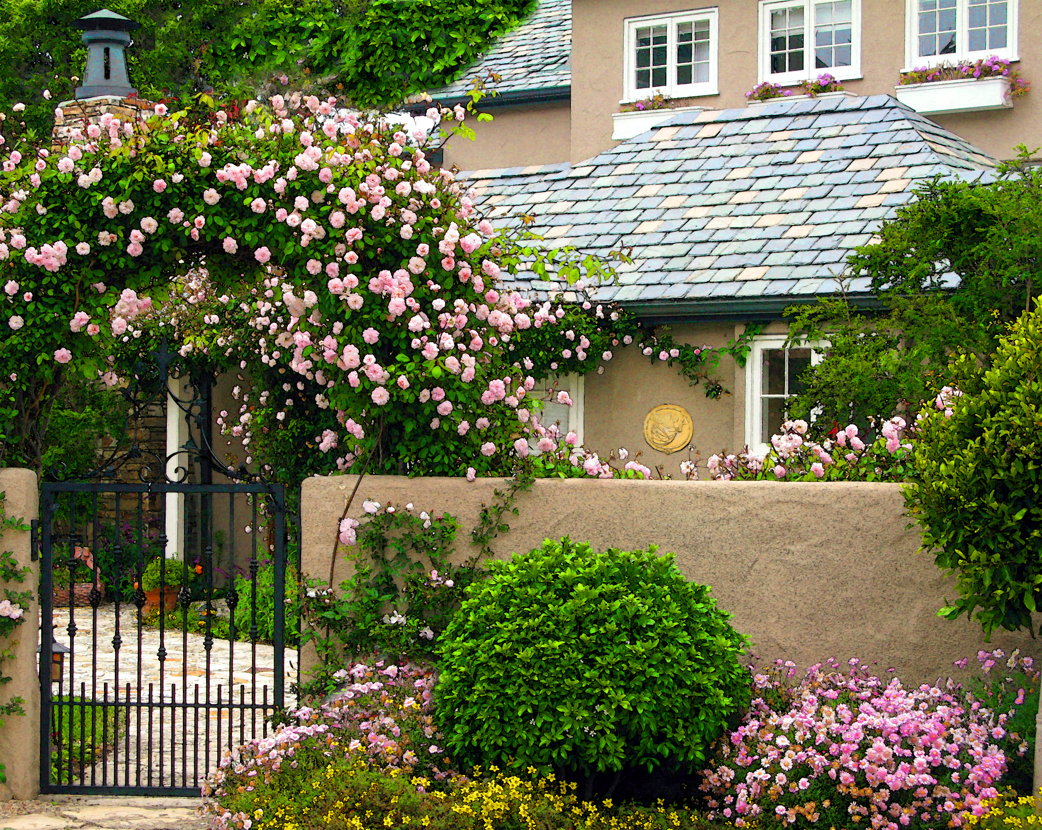 Carmel s cottage gardens once upon a time tales from for White house rose garden design