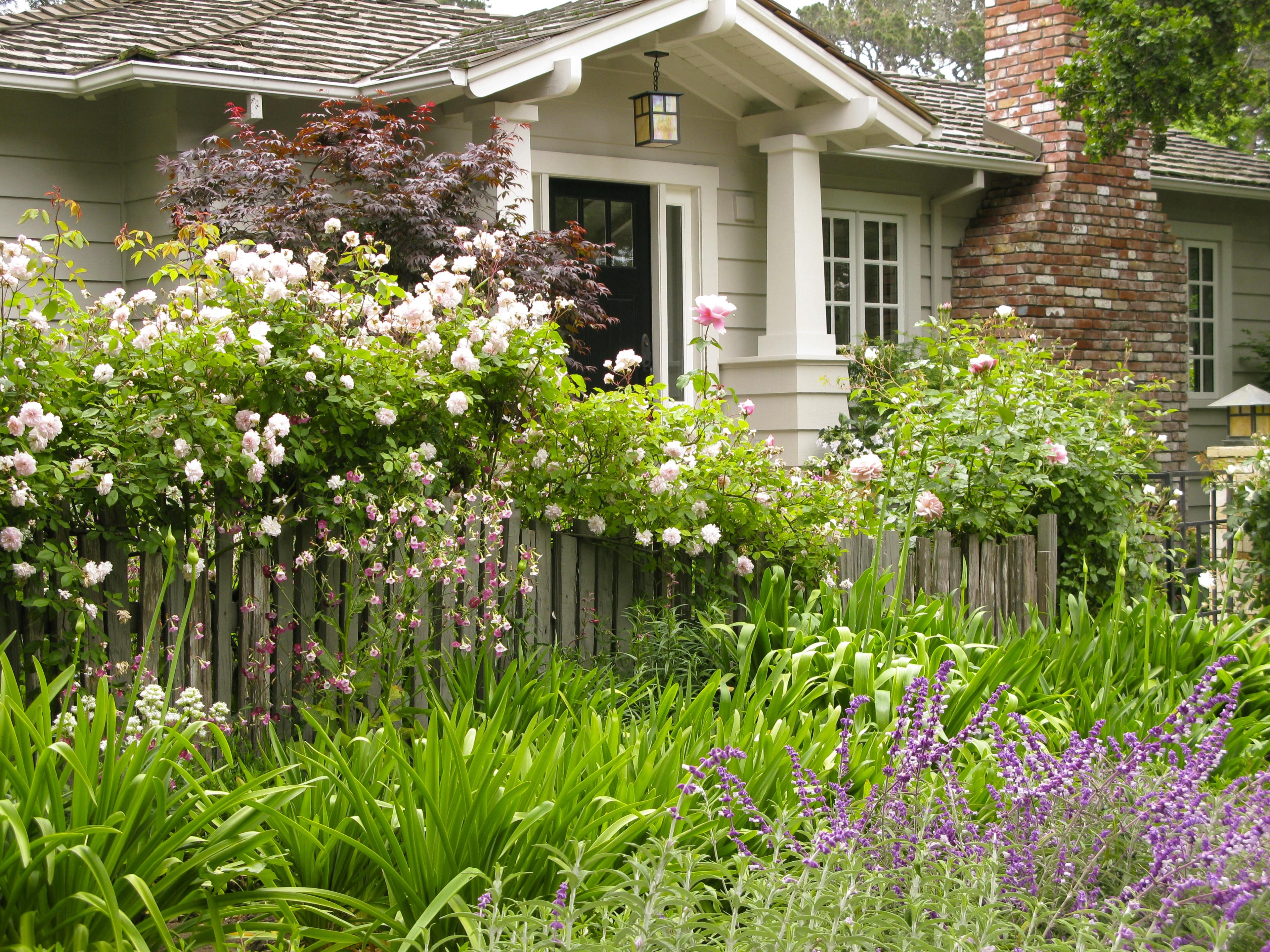 Carmels Cottage Gardens on Suburban Garden Design Ideas