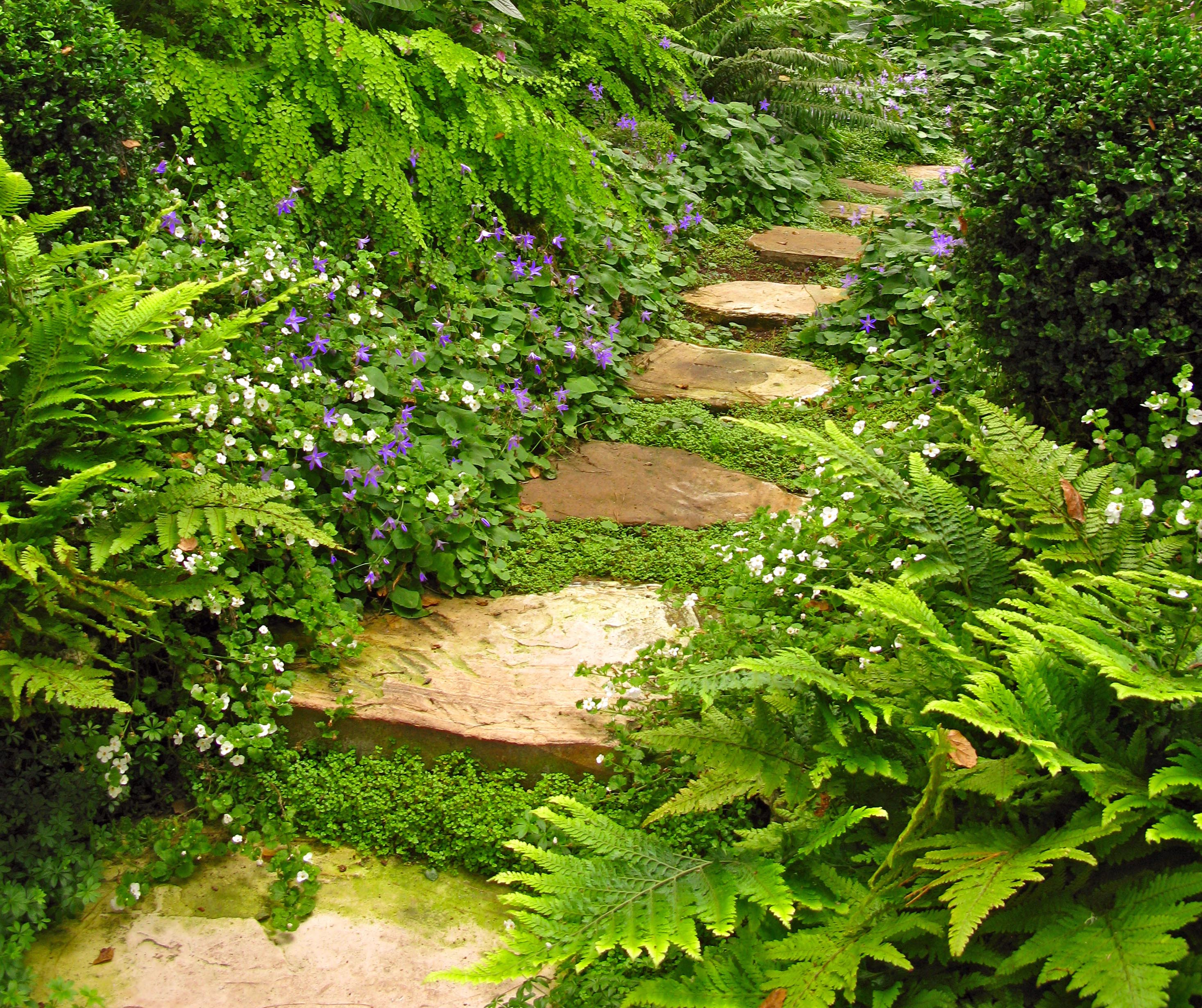 Small Garden With Decked Path And Arbour: CARMEL'S COTTAGE GARDENS- Stitching The Garden Together