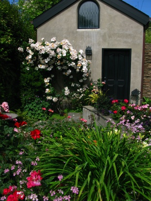 A Cottage of Roses