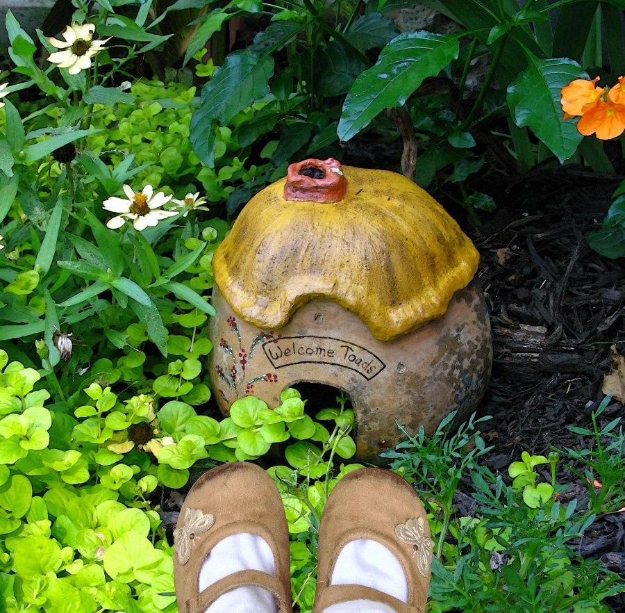 she peeked inside a toad house