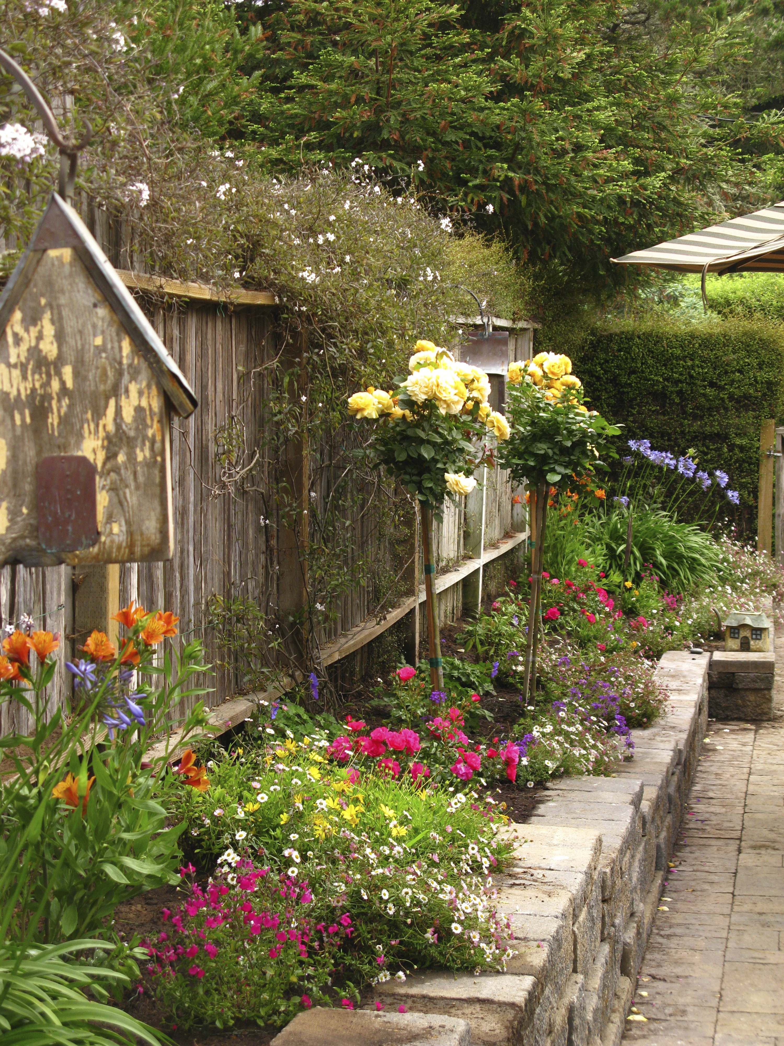 BEACH MUSIC\'S COTTAGE GARDEN   Once upon a time..Tales from Carmel ...